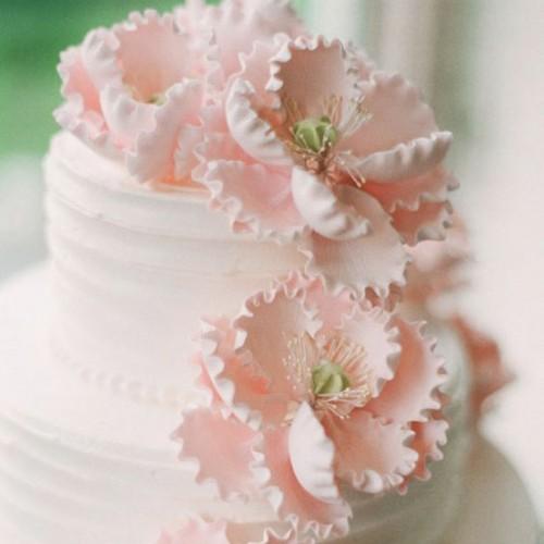 Μικροί Ροζ Στήμονες Λουλουδιών
