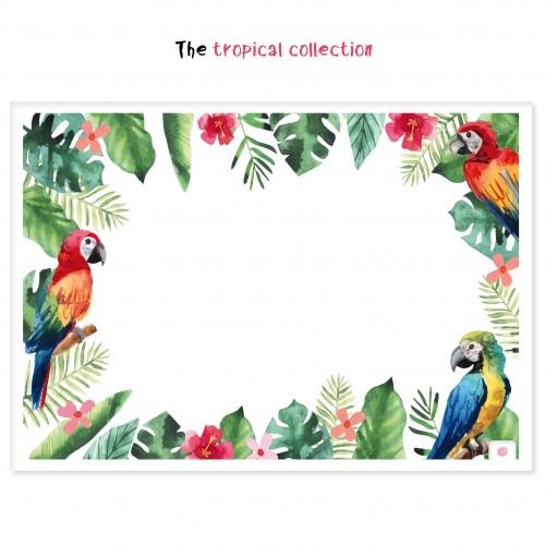 Χάρτινα Σουπλά Τροπικό Θέμα-Πολύχρωμοι Παπαγάλοι (12pcs)