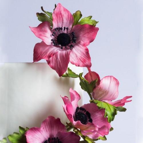 Μικροί Μαύροι Ματ Στήμονες Λουλουδιών Culpitt